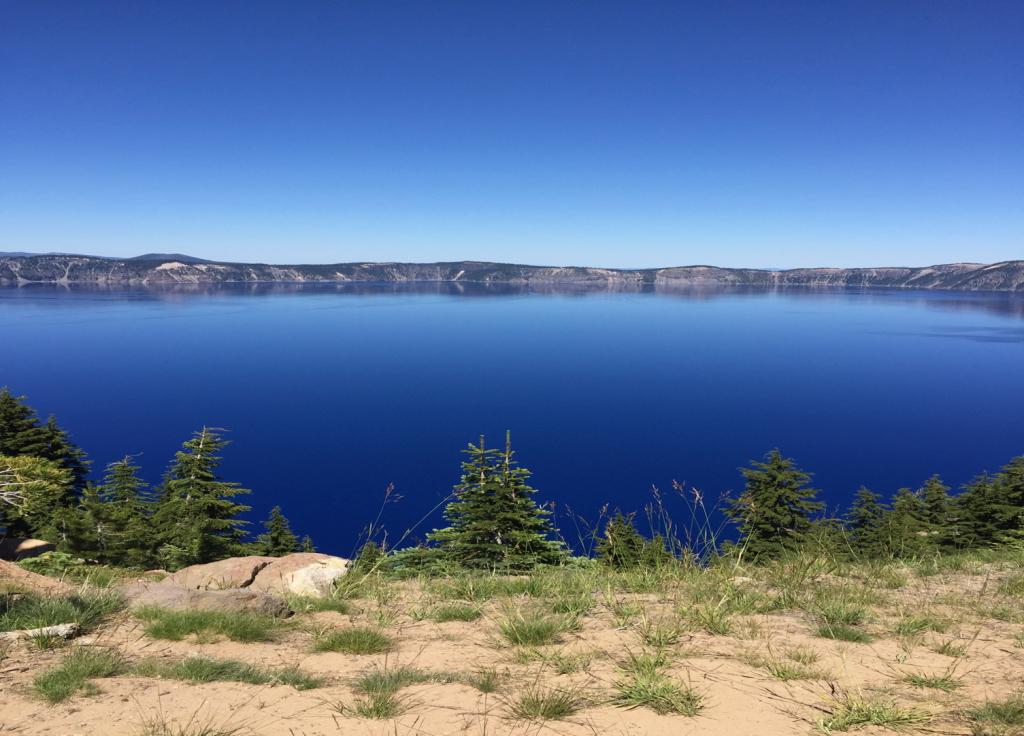 Blue Green Algae from Klamath Lake Oregon.